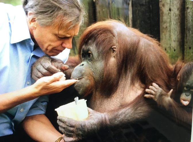 Happy 91st Birthday, Sir David Attenborough