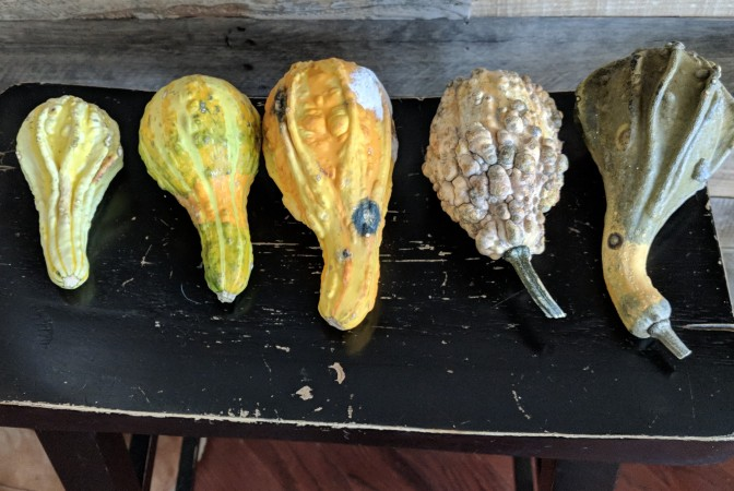 Good Gourd!